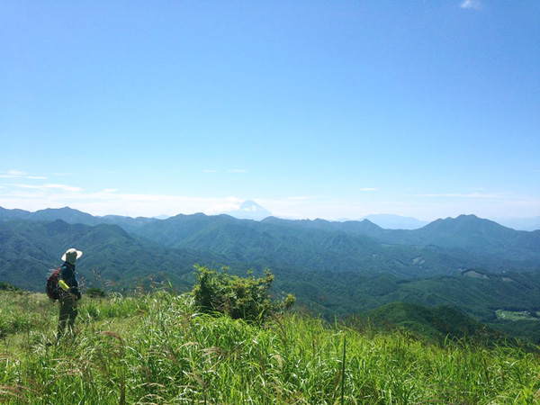 夏の緑と富士山の眺望〜横尾山とレッキング