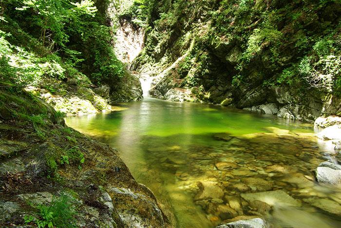 南アルプスの名水 尾白川渓谷トレッキング