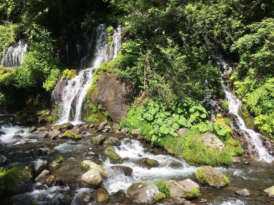 「水の山 吐龍の滝コース」