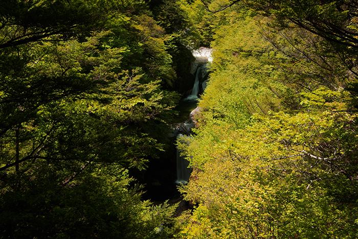 「水の山」無料モニタリングツアー 10月28日(土)〜29日(日)/尾白川渓谷コース/満員となりました。