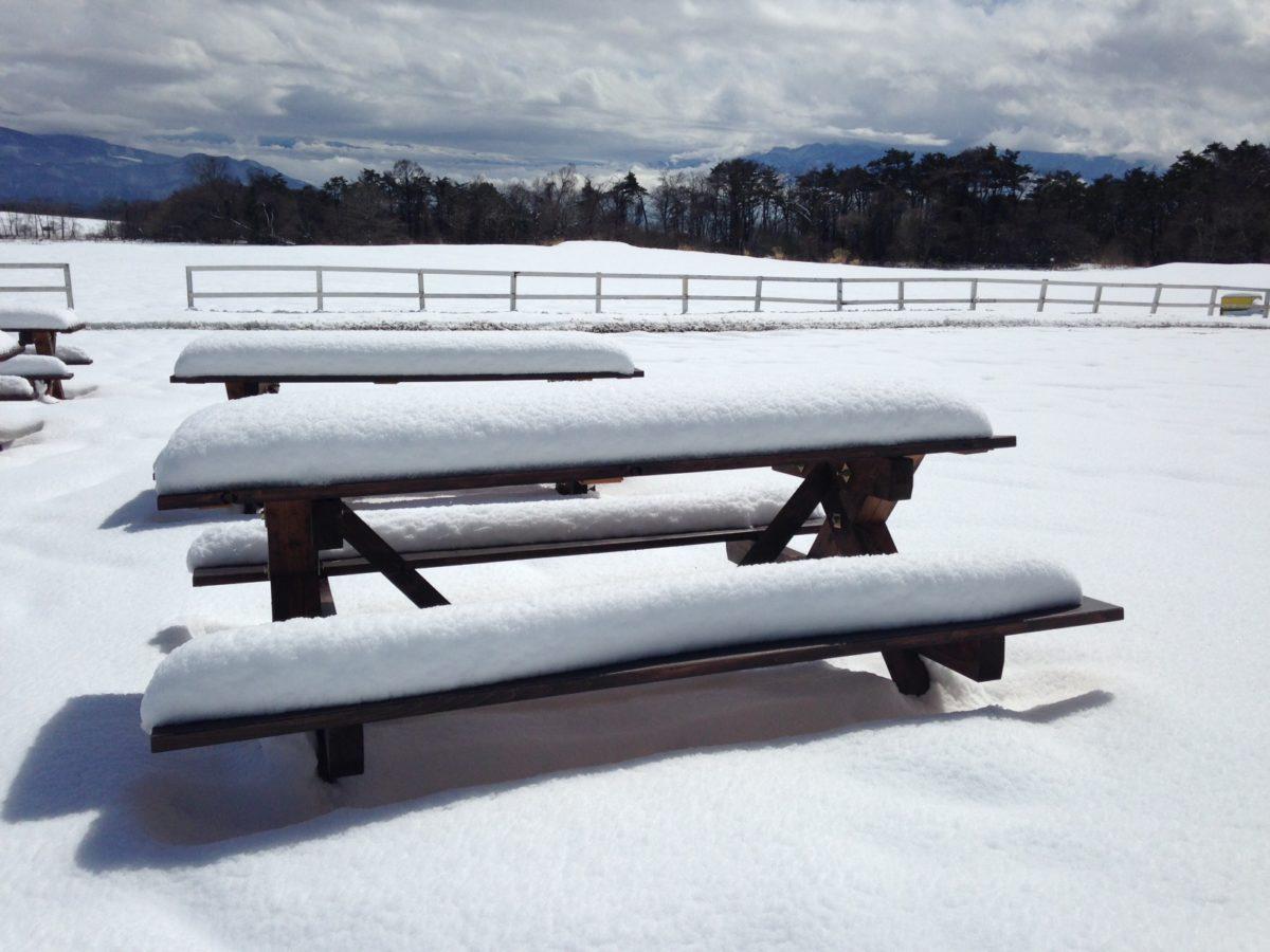 季節はずれの大雪でスノーアクティビティー復活!