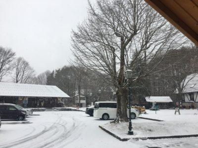ようやく雪景色〜
